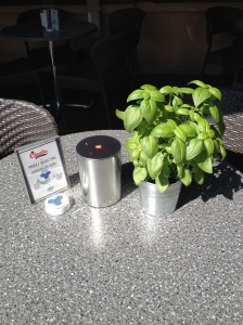 Kaunas restaurant with live basil plants