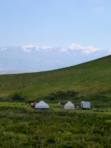 Yurts and herds, Kyrgyzstan