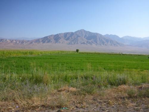 Along the Toktogul reservoir, Kyrgyzstan