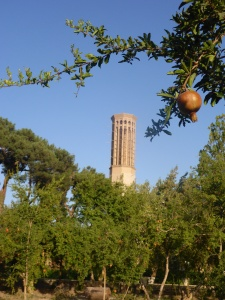A pomegranate orchard surrounds Dolat Abad, Yazd, Iran