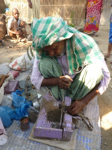 Chopping chewing tobacco between Chhapra and Muzaffarpur, India