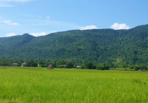 Pagodas dotted the scenery in this stunning valley