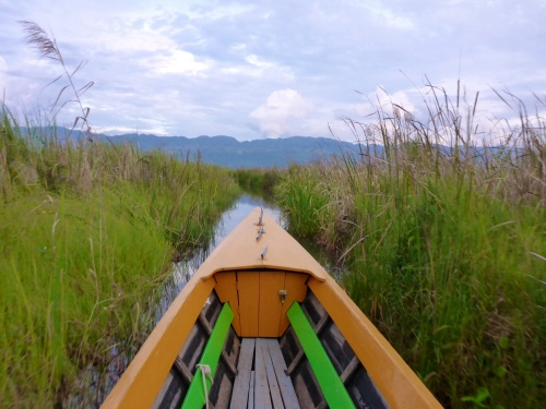 Our favourite part of Inle Lake - a quiet meander through the reeds