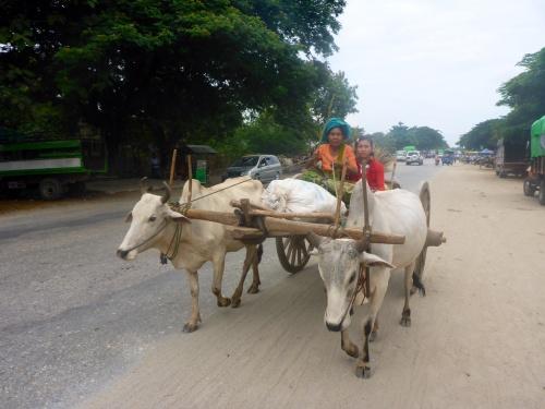 Typical scene in Myanmar