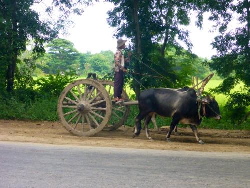 Typical Myanmar scene