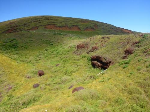 Pukao at Puna Pau quarry