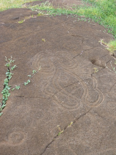 Octopus or mythological sea creature petroglyph at Papa Vaka
