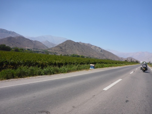 Wine growing valley of Elqui region