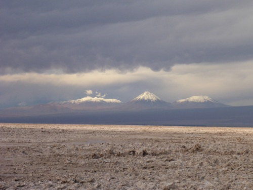 National Flamingo Reserve within the Salar de Atacama