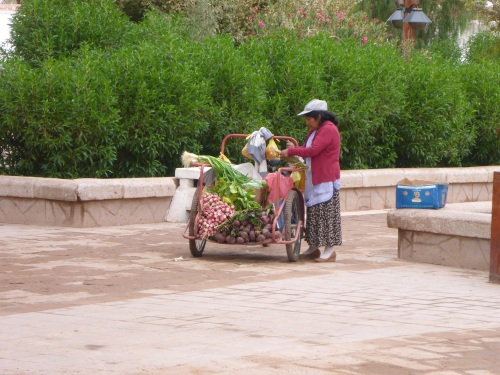 Fresh vegetable seller on San Pedro de Atacama town square