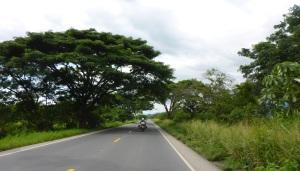 Loving the green in Ecuador