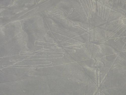 The condor geoglyph.
