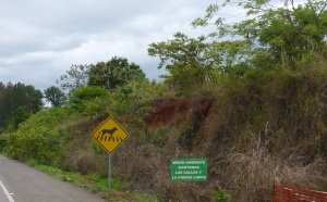 Would love to know what this sign means, Panama