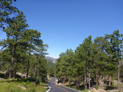 Winding Black Hills roads