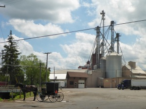 Grain storage and Buggy