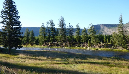 Morning mist on Madison river in Yellowstone