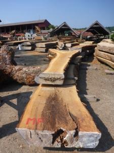 Lumberyard at Mystic Seaport