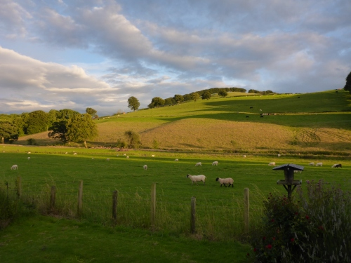 Enjoying Celia and Richard's backyard view and great company near Dumfries, Scotland