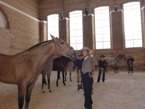 Royal stables, Cordoba, Spain