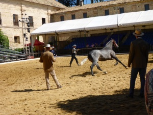 Royal stables, Cordoba, Spain