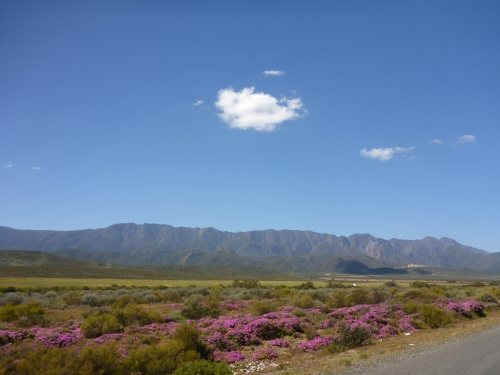 Little Karoo, South Africa