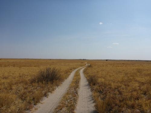 Makgadikgadi, Botswana