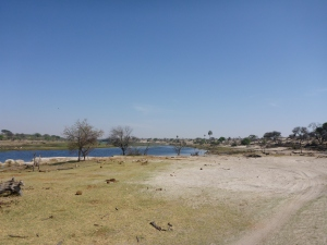 Khumaga wildlife camp, Botswana