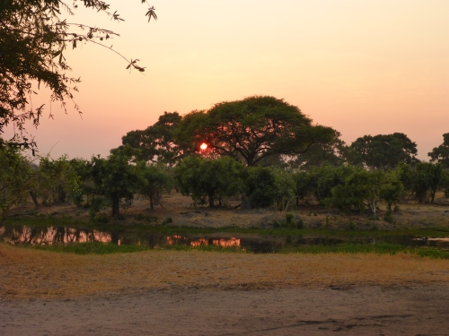 Spot the hippo, Dijara camp, Botswana